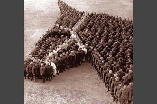 การขอบคุณสัตว์ ปี 1918